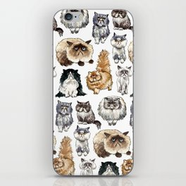 Disappointed Cats iPhone Skin