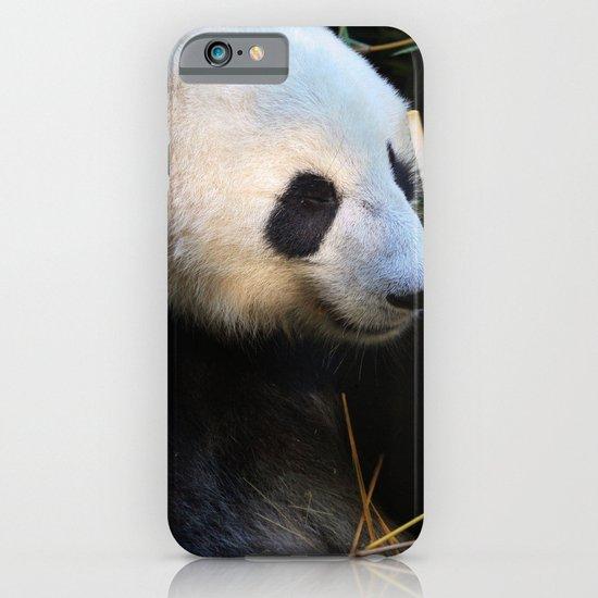 Panda Nap iPhone & iPod Case