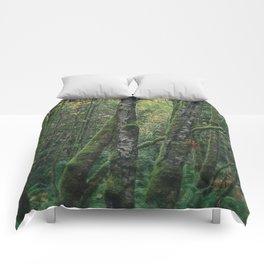 Forest Floor Comforters