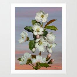 Spade's Apple Blossoms Art Print