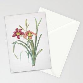 Vintage Orange Day Lily Illustration Stationery Cards