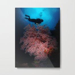 Among the Corals Metal Print