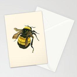 Vintage Scientific Bee Stationery Cards