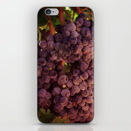 Vineyard Vines iPhone Skin