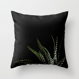 Haworthia Succulent plant cactus Throw Pillow