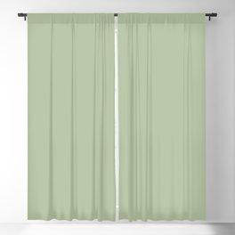 CELADON GREEN solid color Blackout Curtain