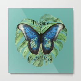 Morph Butterfly - Costa Rica Metal Print