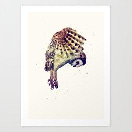 Flying Owl II Art Print