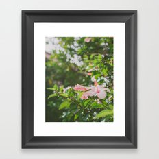 Bring me flowers Framed Art Print