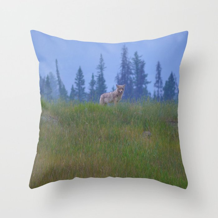Early morning coyote sighting in Jasper National Park Throw Pillow