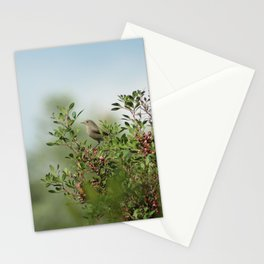 Little Grey Bird Perching on a Bush Stationery Cards
