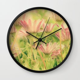 Vintage Spring Coral Pink Daisy Flowers Wall Clock