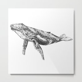 Whale of a Time Metal Print