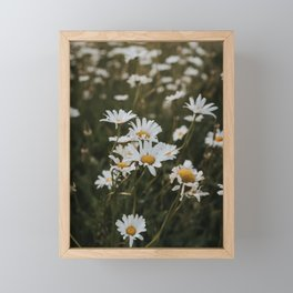 Daisies in a spring field | Vertical flower photo print Framed Mini Art Print