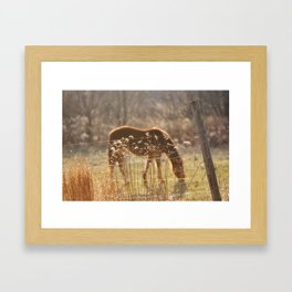 dreamy horse photo Framed Art Print