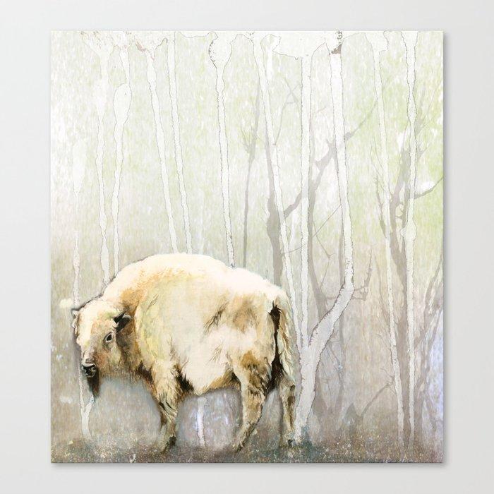 White Buffalo's Hollow Canvas Print