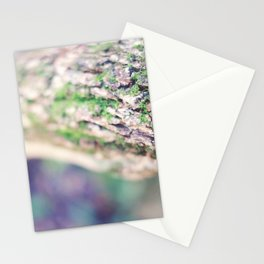 Life in the Undergrowth 01 Stationery Cards