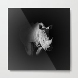 White Rhino Portrait Metal Print