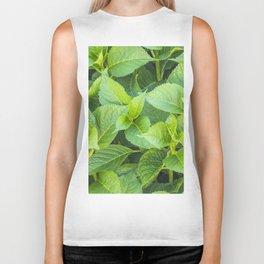 Garden of hydrangeas plants Biker Tank