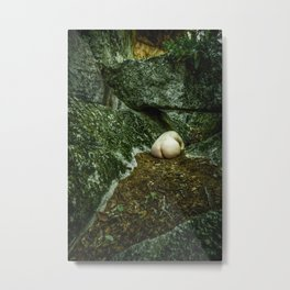 Egg Rocks Metal Print