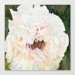 White Peony Watercolor Botanical Art Canvas Print