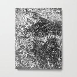 Straw ashes ~hai~ Metal Print