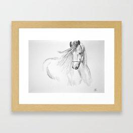 Black & White Horse Framed Art Print