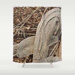 Still life in palm bark Shower Curtain