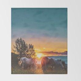 Horse Sunrise (Color) Throw Blanket