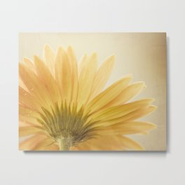 Gold Yellow Flower Photography, Golden Daisy Floral Photo, Nature Botanical Macro Picture Metal Print