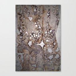 Ephemeral Lace   Canvas Print