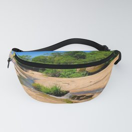 """A Walk on the Wild Side II"" by ICA PAVON Fanny Pack"