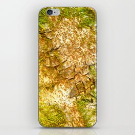 Tree iPhone Skin