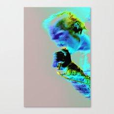 Morrissey Quarry  Canvas Print