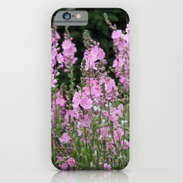 Prairie Mallow iPhone Case