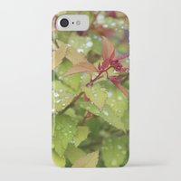 drink iPhone & iPod Cases featuring Drink by Kim Hawley