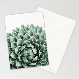 Succulent splendour Stationery Cards