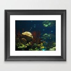 In  the Aquarium Framed Art Print