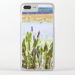 Florida Beauty 5 Clear iPhone Case