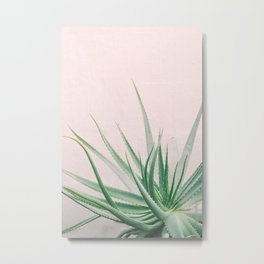 Minimal Aloe on pink background - Aloe Photography Metal Print