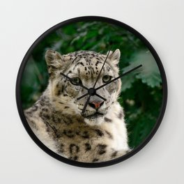 Feb Snep - Snow Leopard Wall Clock