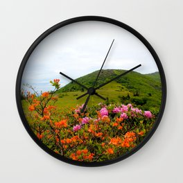 Image USA Carolina Roan Mountain Rhododendrons Nature Hill park Rhododendron Bush Parks Shrubs Wall Clock