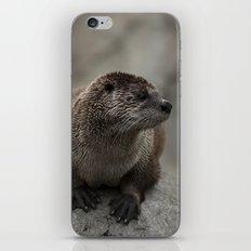 Doin' What He Otter iPhone Skin