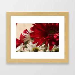 Gerbera Number 25 Framed Art Print