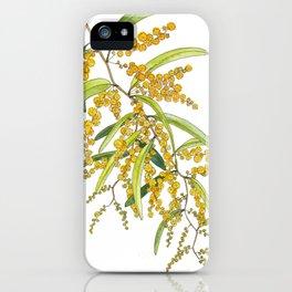 Australian Wattle Flower, Illustration iPhone Case