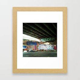 FDR Framed Art Print