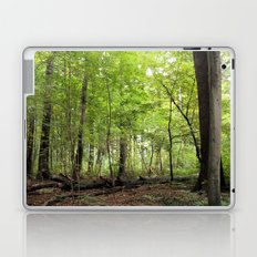 Transience in the Forest 2 Laptop & iPad Skin
