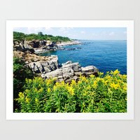 maine Art Prints featuring Maine  Coast by S. Miste