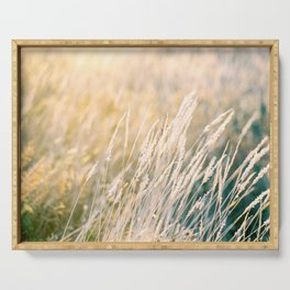 Gold as grass | Golden hour sunset photograph | Wanderlust travel print Serving Tray