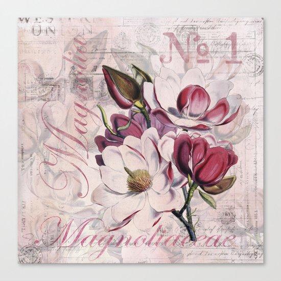 Vintage Magnolia flower illustration Canvas Print